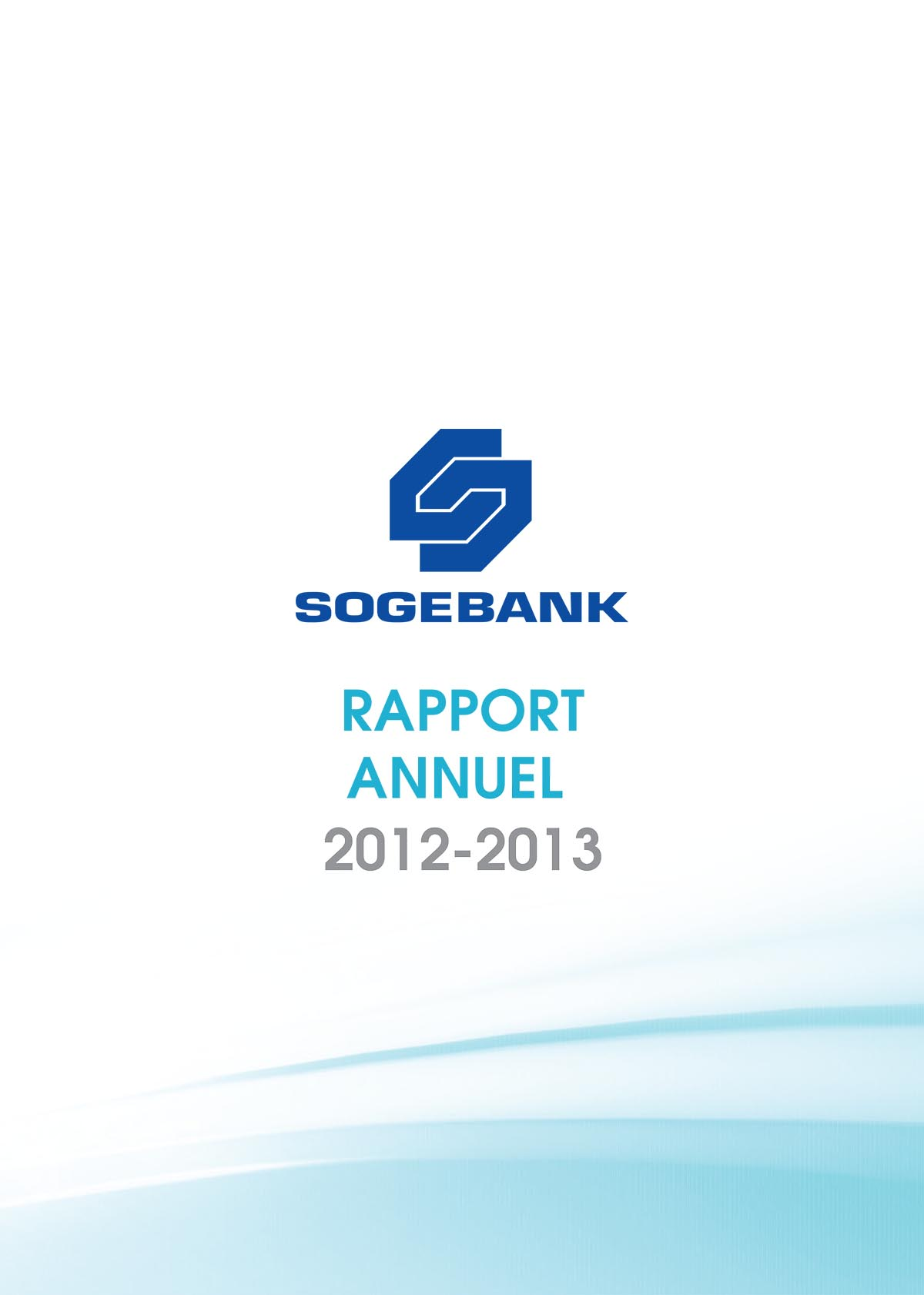 Rapport  Annuel 2012 – 2013